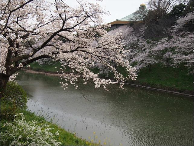 写真 2014-03-31 16 39 27