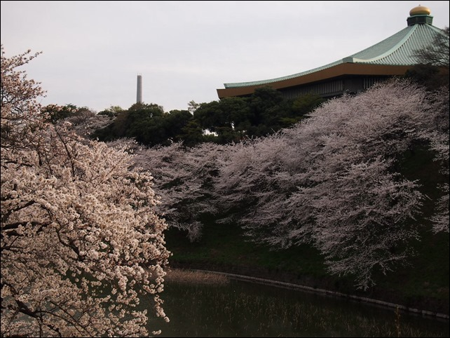 写真 2014-03-31 16 47 23