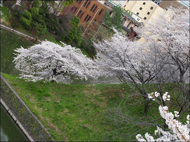 写真 2014-03-31 17 11 29
