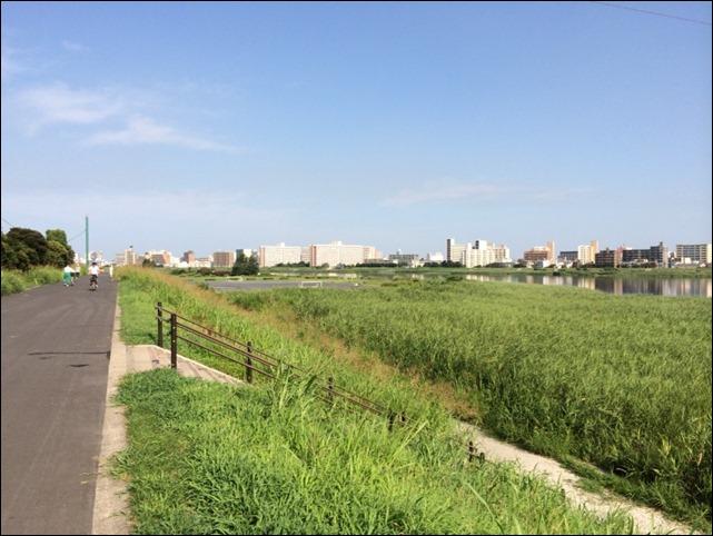 多摩川土手(川崎側から六郷方面)