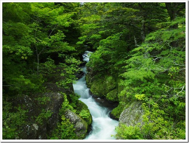 竜頭の滝上流2